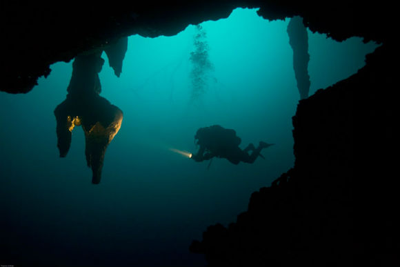 Diving in Cenotes with Phocea Mexico in Cancun